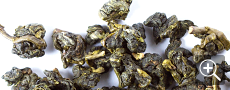 Quangzhou Milk Oolong