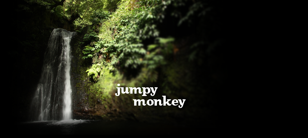 Jumpy Monkey