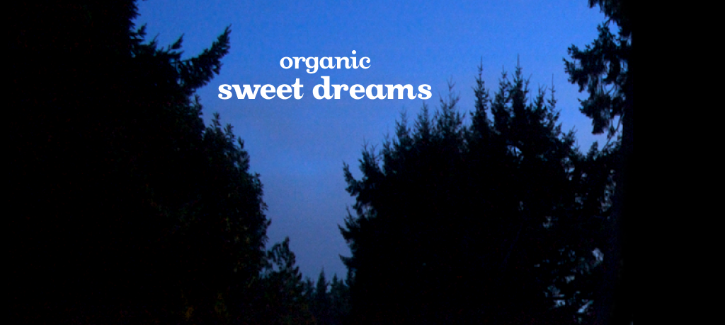 Sweet Dreams (organic)