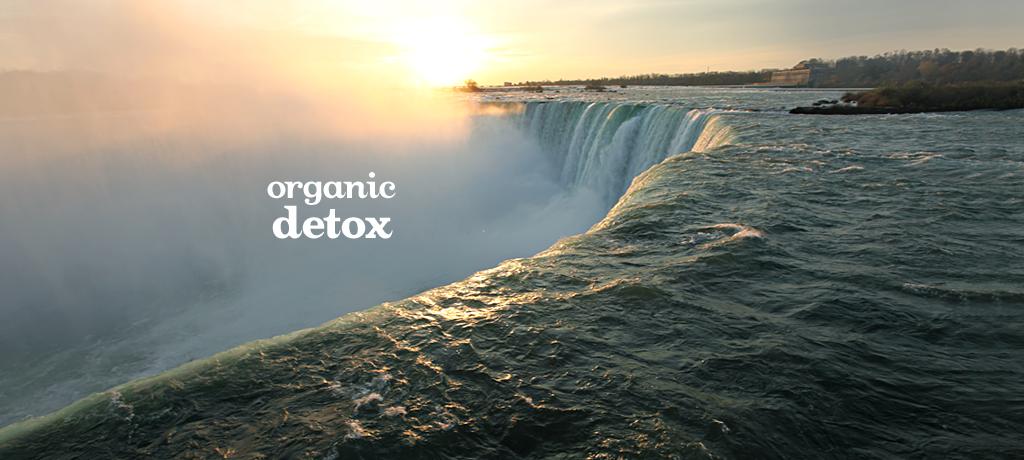 Detox (Organic)