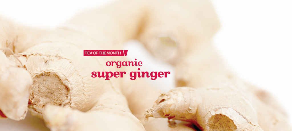 Super Ginger (Organic)