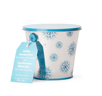 White Nectarine Collectible Tin